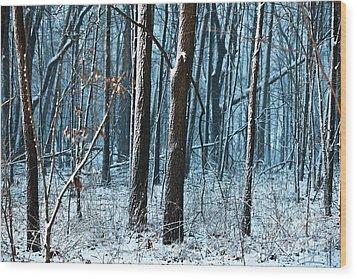 Snow At Dusk Wood Print by Tim Michael