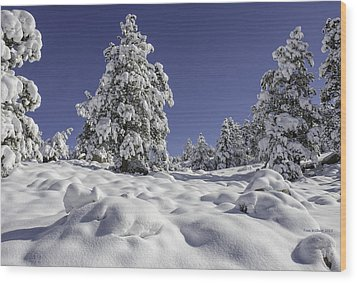 Snow Bomb Wood Print by Tom Wilbert
