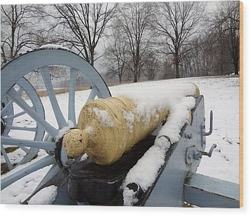 Wood Print featuring the photograph Snow Cannon by Michael Porchik