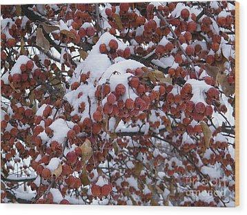 Snow Covered Berries Wood Print