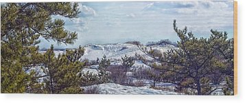 Wood Print featuring the photograph Snow Covered Dunes Photo Art by Constantine Gregory