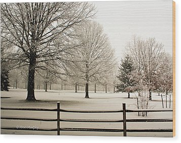Snow-covered Landscape Wood Print by Ann Murphy