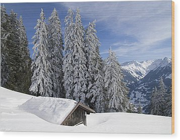 Snow Covered Trees And Mountains In Beautiful Winter Landscape Wood Print by Matthias Hauser