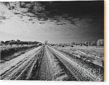 snow covered untreated rural small road in Forget Saskatchewan Canada Wood Print by Joe Fox