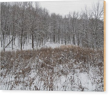 Snow Covered Woodland Wood Print