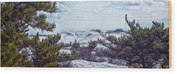 Wood Print featuring the photograph Snow Covered Dunes by Constantine Gregory