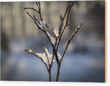 Wood Print featuring the photograph Snow Crystal Sunrise by Glenn DiPaola