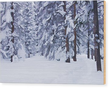 Snow-dappled Woods Wood Print