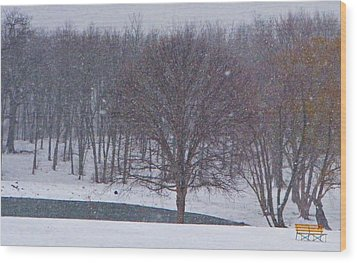 Snow Day Wood Print by Chris Berry