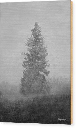 Snow Day Wood Print by Darryl Gallegos