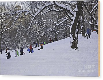 Snow Day In The Park Wood Print by Madeline Ellis