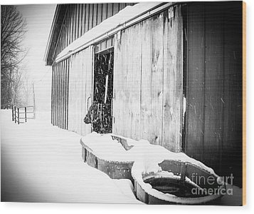 Snow Day Wood Print by Sue OConnor