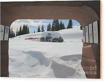 Wood Print featuring the photograph Snow Daze by Fiona Kennard