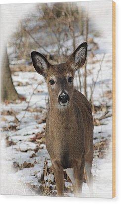 Snow Deer Wood Print