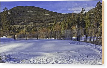 Snow Fence Fall River Road Wood Print by Tom Wilbert