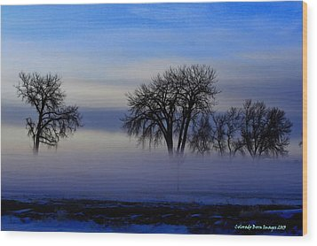 Snow Fog Wood Print by Rebecca Adams