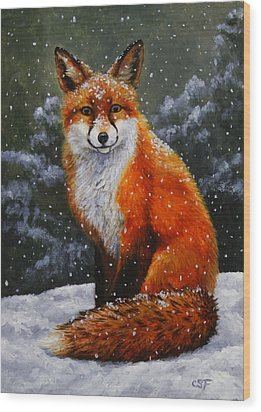 Snow Fox Wood Print by Crista Forest