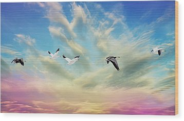 Snow Geese Over New Melle Wood Print by Bill Tiepelman