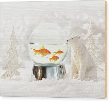 Snow Globe In  Winter Scene Wood Print by Sandra Cunningham