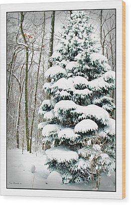 Snow In Ohio Wood Print by Joan  Minchak