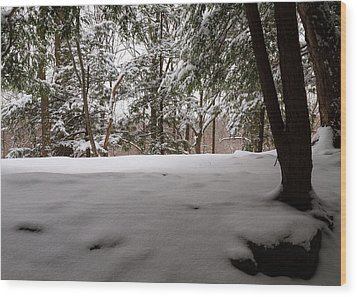 Snow In Shade  Wood Print by Tim Fitzwater