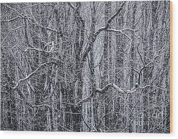 Snow In The Forest Wood Print by Diane Diederich