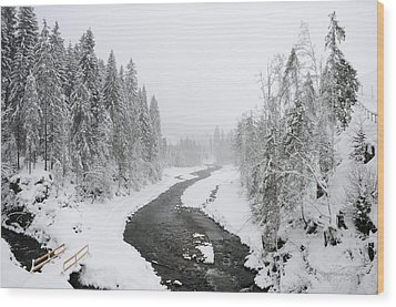 Snow Landscape - Trees And River In Winter Wood Print by Matthias Hauser