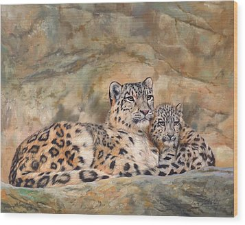 Snow Leopards Wood Print by David Stribbling