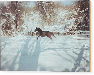 Snow Lover Wood Print