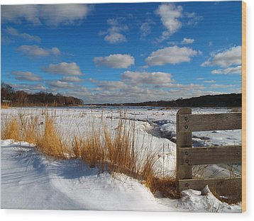 Wood Print featuring the photograph Snow Marsh by Dianne Cowen