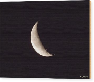 Wood Print featuring the photograph Snow Moon by Deborah Moen