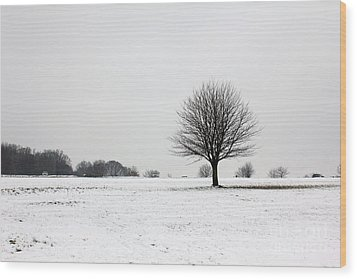 Snow On Epsom Downs Surrey England Uk Wood Print