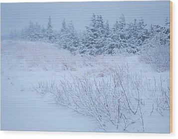 Snow On New Years Eve Wood Print