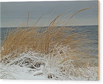 Snow On The Dunes Wood Print by Nancy Landry