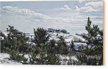 Wood Print featuring the photograph Snow On The Dunes Photo Art by Constantine Gregory