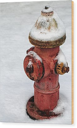 Snow On The Hydrant Wood Print by John Rizzuto
