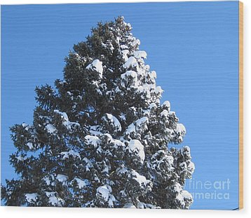 Snow On The Pine Wood Print by Donna Cavender
