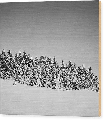 Snow On Tree Wood Print by Frodi Brinks