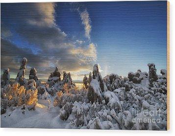 Snow On Tufa At Mono Lake Wood Print by Peter Dang