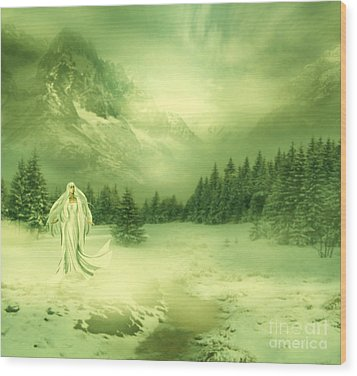 Snow Queen Wood Print by Ester  Rogers