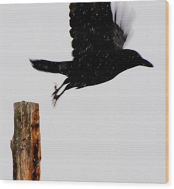 Wood Print featuring the photograph Snow Raven Blurr by Britt Runyon