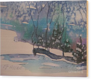 Snow Reflections Wood Print by Gretchen Allen