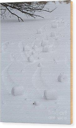 Snow Rollers Wood Print