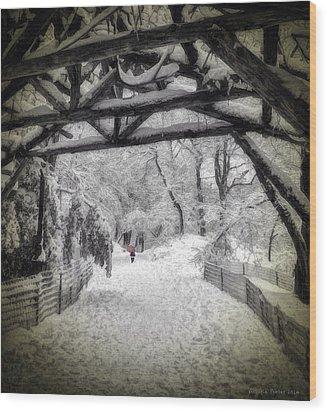 Snow Scene In Central Park Wood Print