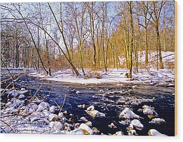 Wood Print featuring the photograph Snow Scene Pennsylvania Woodland Stream by A Gurmankin