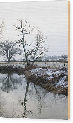 Snow Scene With River Running Through Wood Print by Fizzy Image