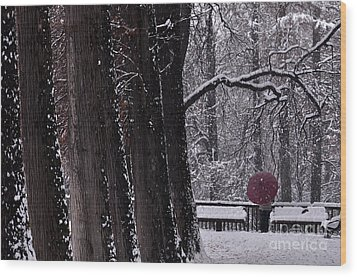 Wood Print featuring the photograph Snow by Simona Ghidini