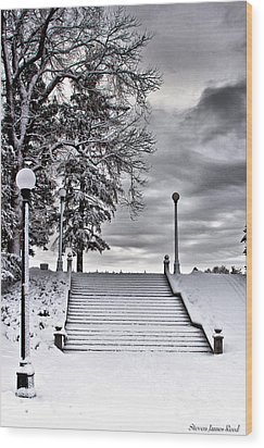 Snow Stairs Wood Print by Steven Reed