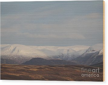 Snow Topped Mountains Wood Print by David Grant