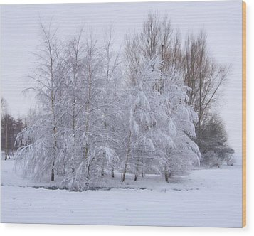 Wood Print featuring the photograph Snow Trees by Paul Gulliver